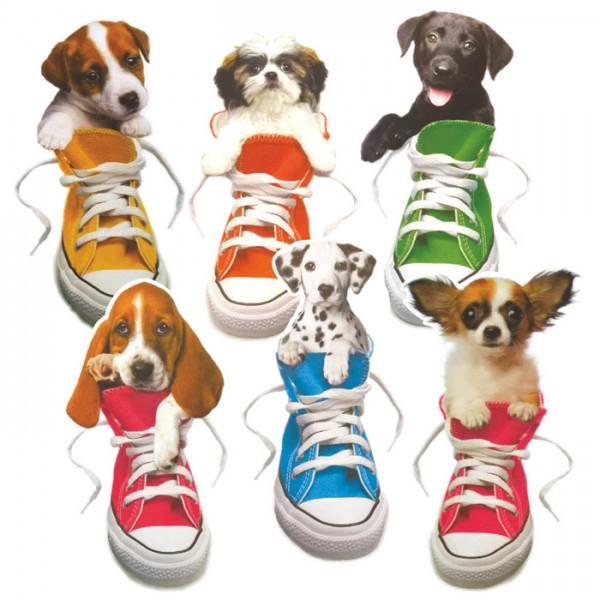 Trendy Pups Stickers